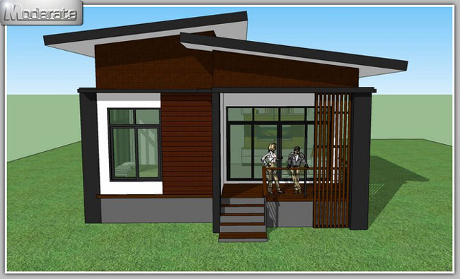Elevated Modern Single Storey House - Pinoy House Plans on